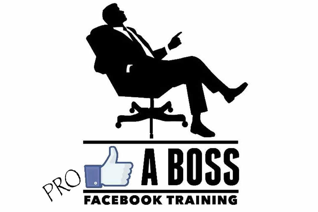 LIKE A Boss PRO - Facebook Training