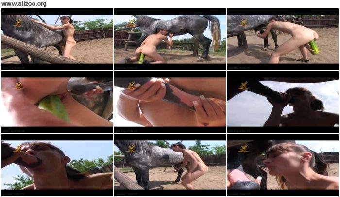 c3d93e672675113 - Vegetables Toys - Videos Bestiality Horse