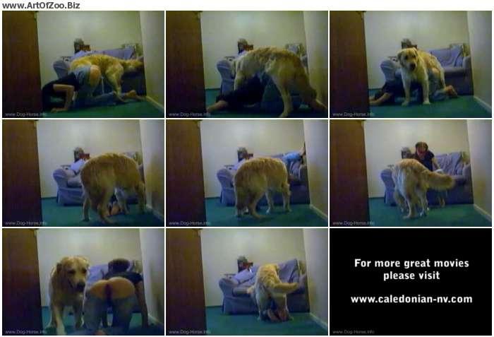 4bd2be1174643194 - Shylarks Loves her Dog - Retro AnimalSex