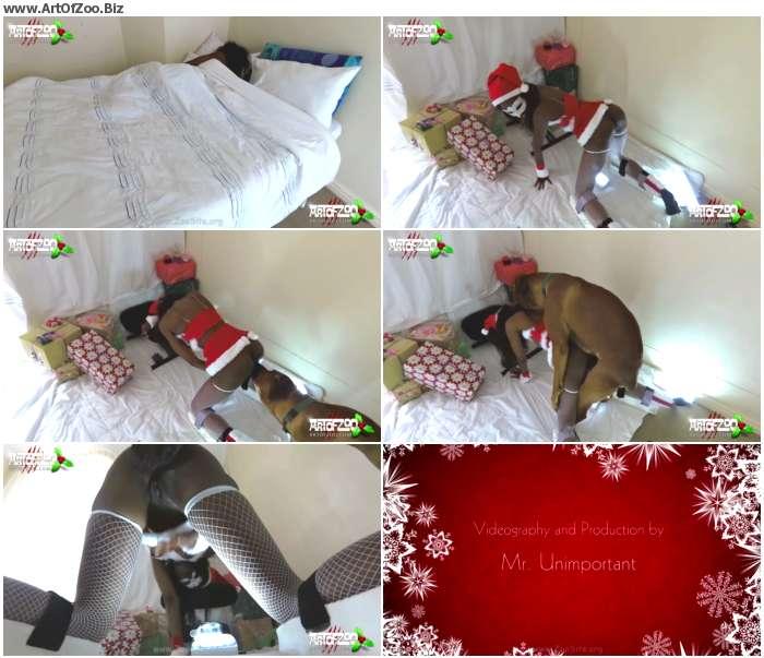 cef0c01066053844 - Santa Bestiality Dog