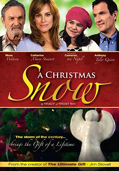 A Christmas Snow 2010 BRRip XviD MP3-RARBG