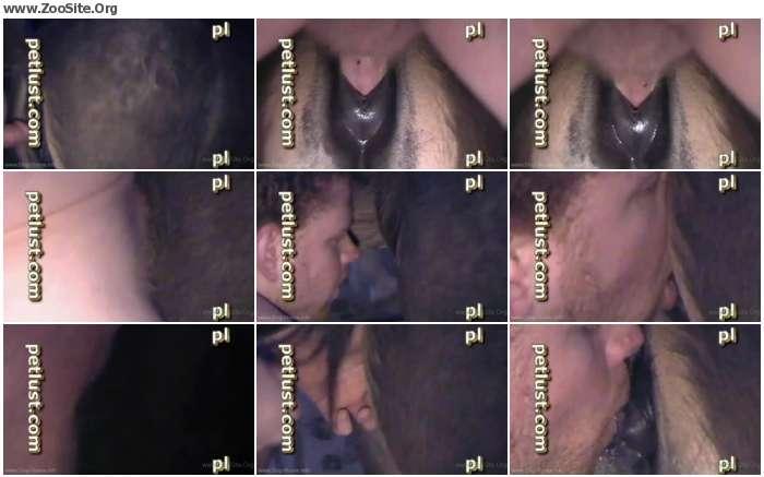 eee17d736857943 - ZooSex Horse porn - Horse Porn Videos