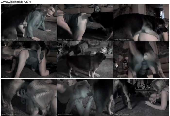 7034da1250301404 - Kc Night Fuck - Vintage Bestiality Porn