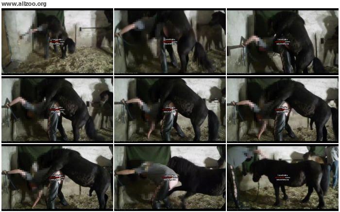 03ee9a880266474 - Unbetitelt - Horse German Fuck - Videos Bestiality Horse