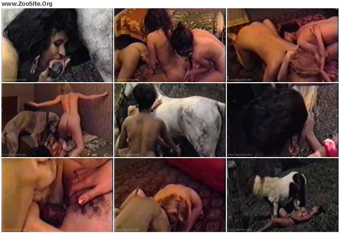 3a650f1153436254 - Vintage Animals - Horse Porn Videos