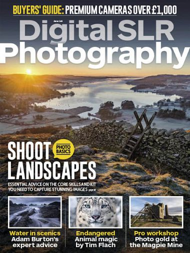 Digital SLR Photography – January 2019