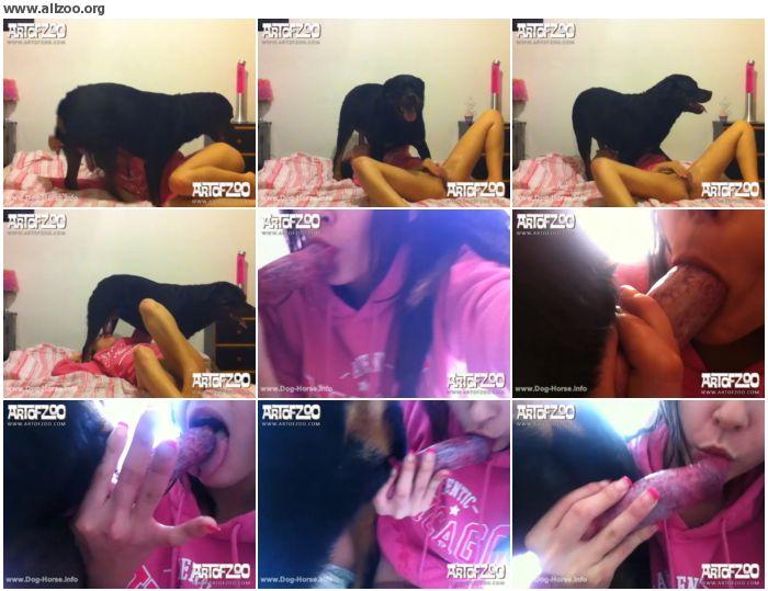da3f23679683713 - ArtOfZoo - Puppydog Tales Ii - Dog Animal Sex