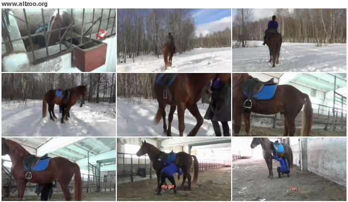 d84fe9672677403 - Horse And My Girl - Videos Bestiality Horse
