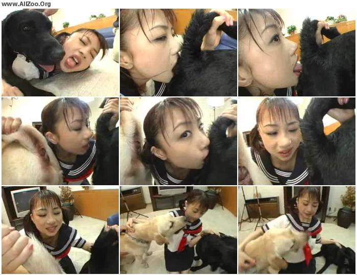 3d0f13673200953 - Asian Whore Forced By Dog - Small Mobile Bestiality Video