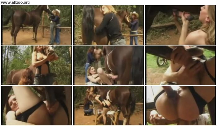 34e4a2880267074 - I Love Horse Sex - Videos Bestiality Horse