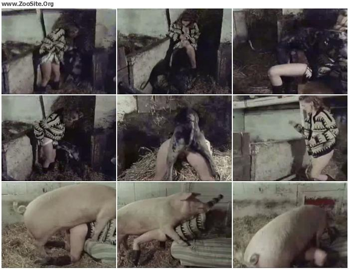 840c53868174664 - Fun On The Farm - ZooSex Tube Amateur