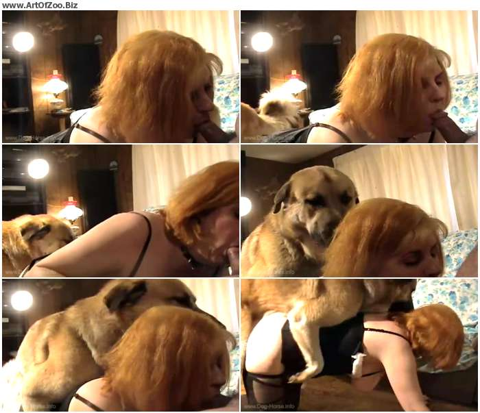 f7ce341010218564 - Russian Zoo Orgy / DogSex