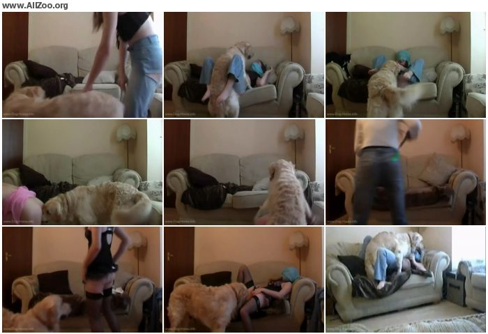 dc2e47673206003 - Bestiality Amateur - Another Day With Shylark