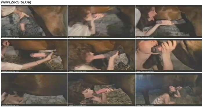 ff4a91741277263 - Beauty Sucking Mastiff - Retro Animal Sex