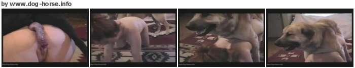 http://images2.imagebam.com/3a/b0/c5/001fc5650211963.jpg