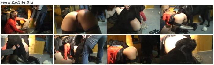 e17a46732331653 - Kerstin - Tr Cafe Dog Party - Actress of Zoofilia Videos
