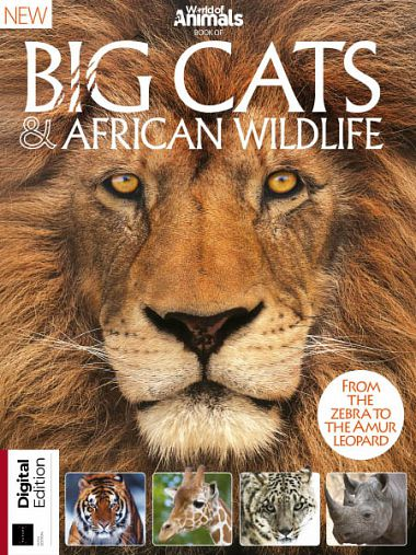 World Of Animals Book Of Big Cats & African Wildlife Fifth Edition