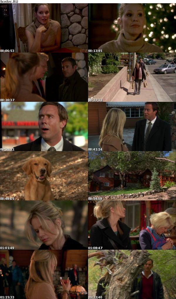 A Golden Christmas 2009 1080p BluRay x264-VETO
