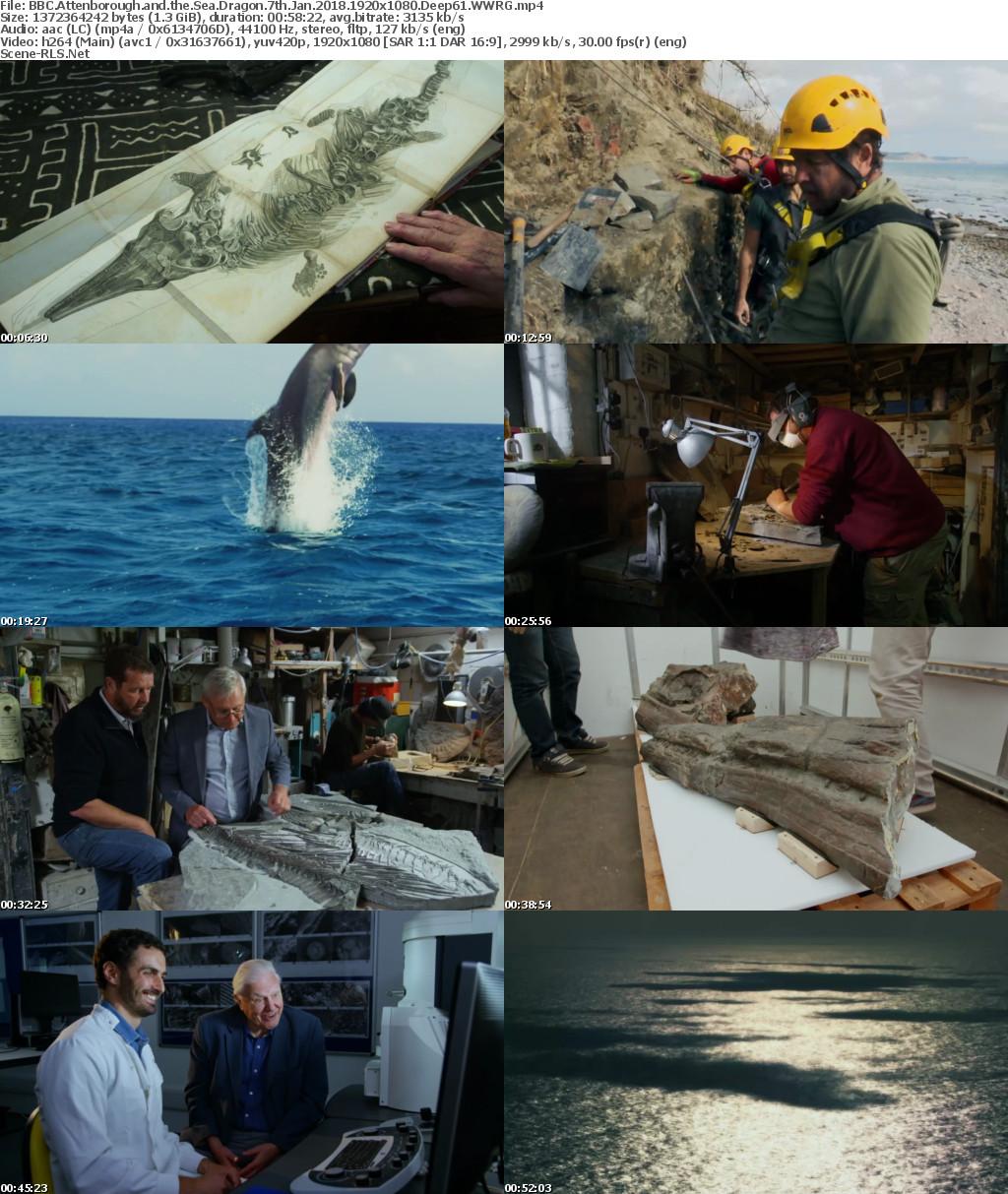 Attenborough And The Sea Dragon 2018 1080p Web X264 Deep61 Scene