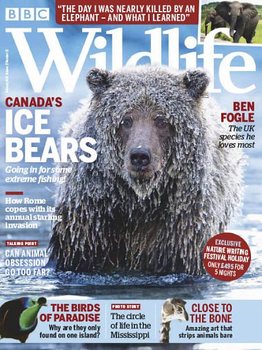 BBC Wildlife – February 2019
