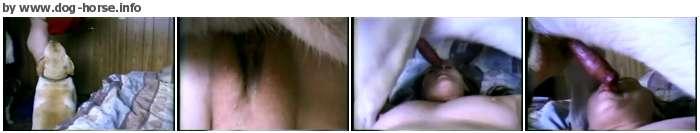 http://images2.imagebam.com/4e/e4/66/87e59d650209593.jpg