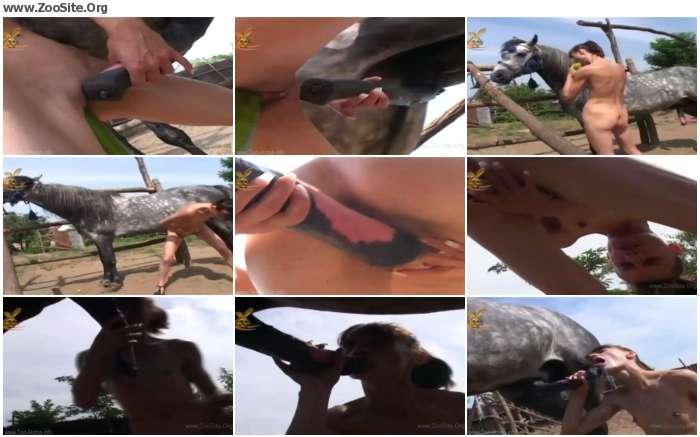 bbd2cf736857403 - Animal Sickness Horse - C - Horse Porn Videos