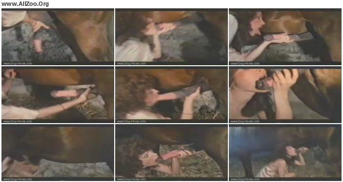a35fb1741286353 - Retro Bestiality - Beauty Sucking Mastiff - Vintage Animals