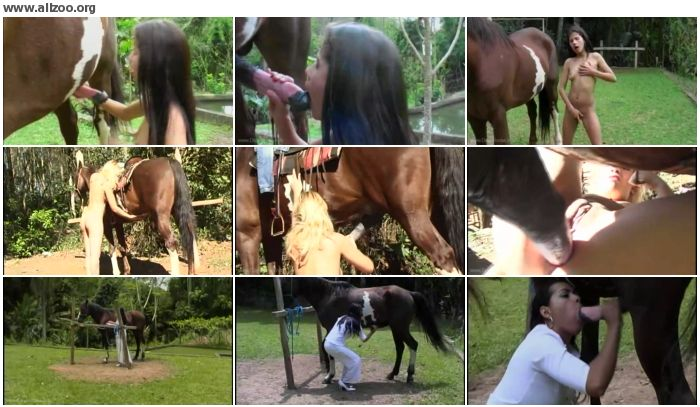 fe310f672671523 - Horse Story 8 - Videos Bestiality Horse