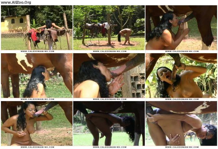 0fc065673218243 - Vintage Zoo - Hannah Loves Horse Cock - Retro AnimalSex