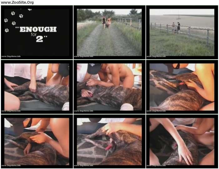 9ec35f886119224 - ZooSkool-Amanda And Anna - DogSex, Dog Bestiality