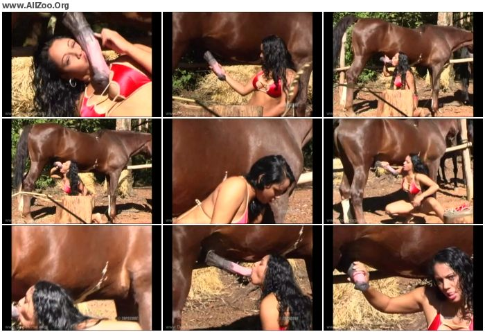 4eb8da680794173 - Retro Bestiality - Horse Suckers - cum in Mouth - Vintage Animals