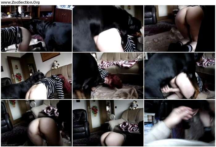 e45cc21012396134 - Amateur Home Dog Sex / AnimalSex Video