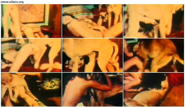 7582351065867874 - Linda Lovelace - Dogarama Dog Fucker - Dog Fuck Girls