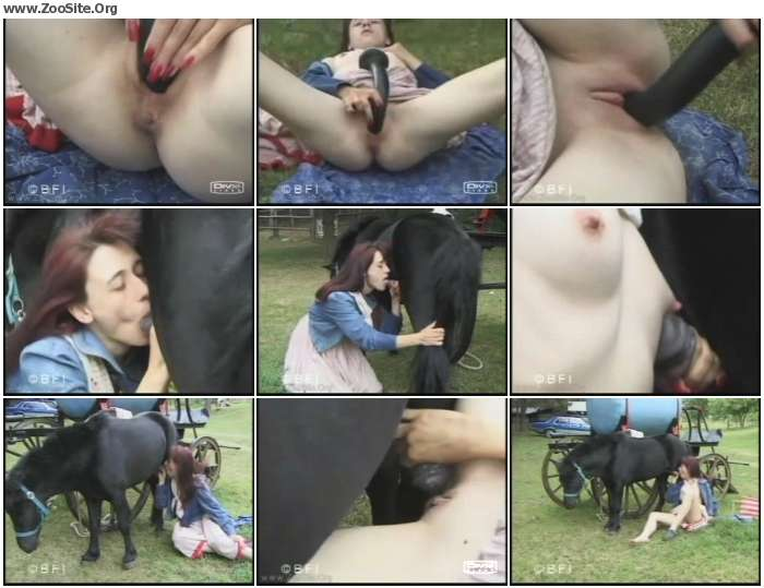 dd37351153375264 - 381 VintageZ00 - Retro Animal Porn Videos
