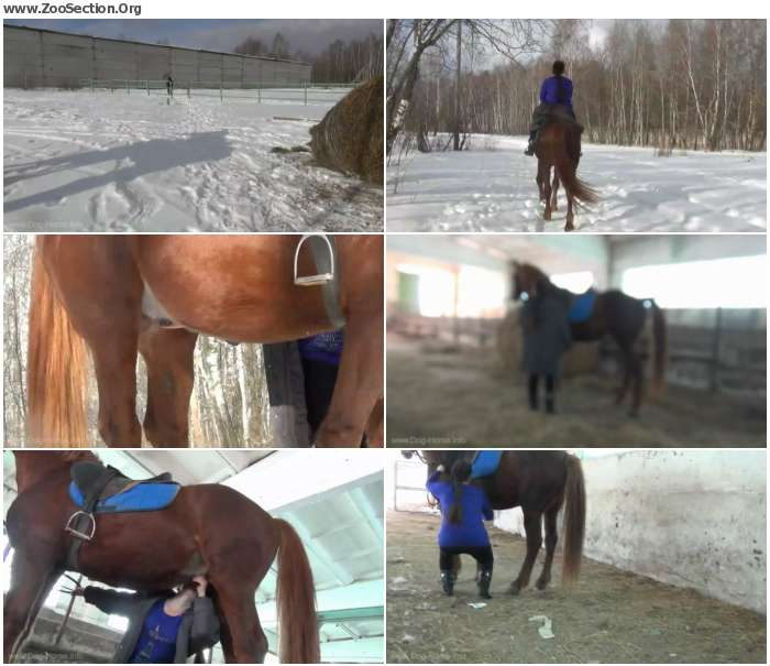 697f4e1250294374 - Horse And My Girl - Horse Porn Video