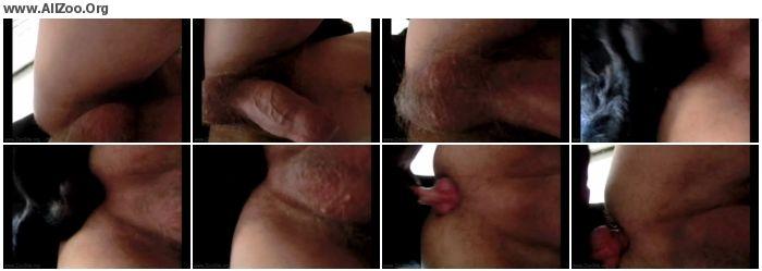 4cb4f71004537564 - Male AnimalSex - Aluzky Under Sex 4 - Zoo Gay ZooPhilia