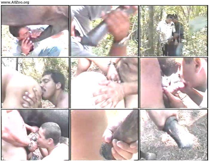 2e5c811197620204 - Gay Zoo Au Brasil - Amateur ZooSex
