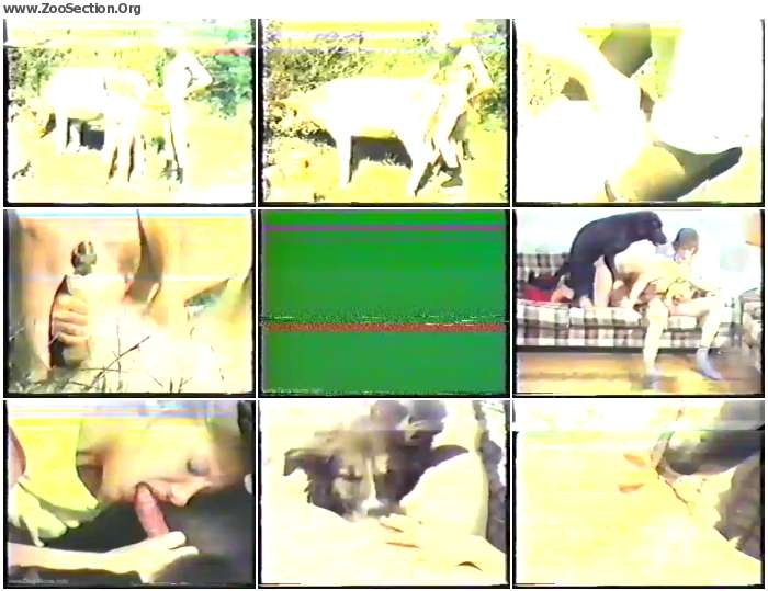 caceb61250296054 - Bodil Joensen - My Life Is Zoosex - Vintage Bestiality Porn