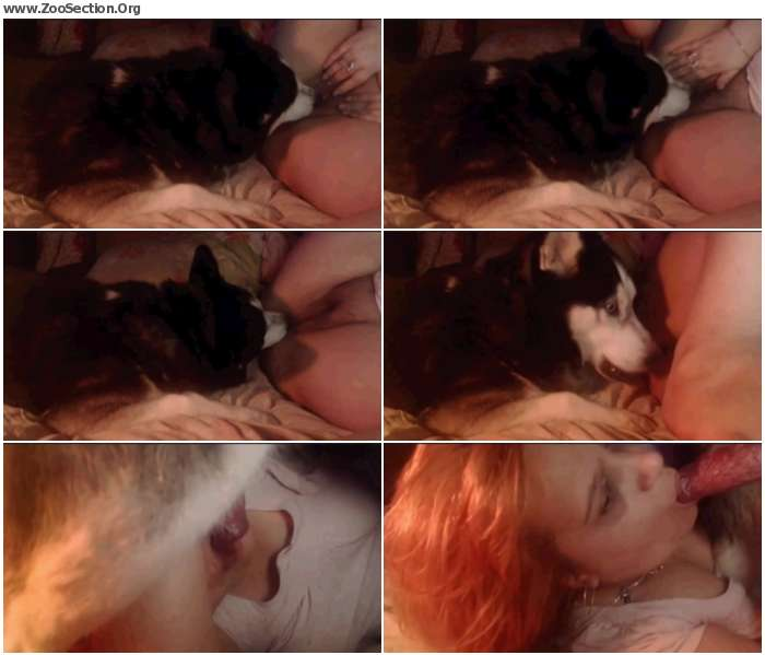 20f9141012952334 - Webcam3 / Stickam ZooSex