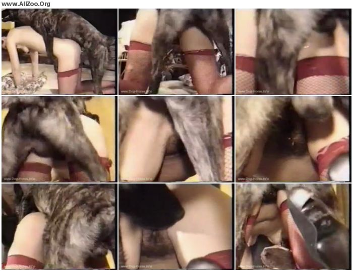 16c2ba741283483 - Retro Bestiality - Mature Retro Zoo Porn - Vintage Animals