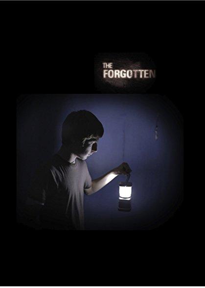 The Forgotten 2014 Dvdrip X264-Spooks