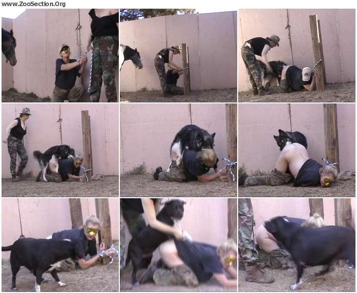 cc3caf1012913534 - Fun In The Dog Yard / PetSex SiteRip