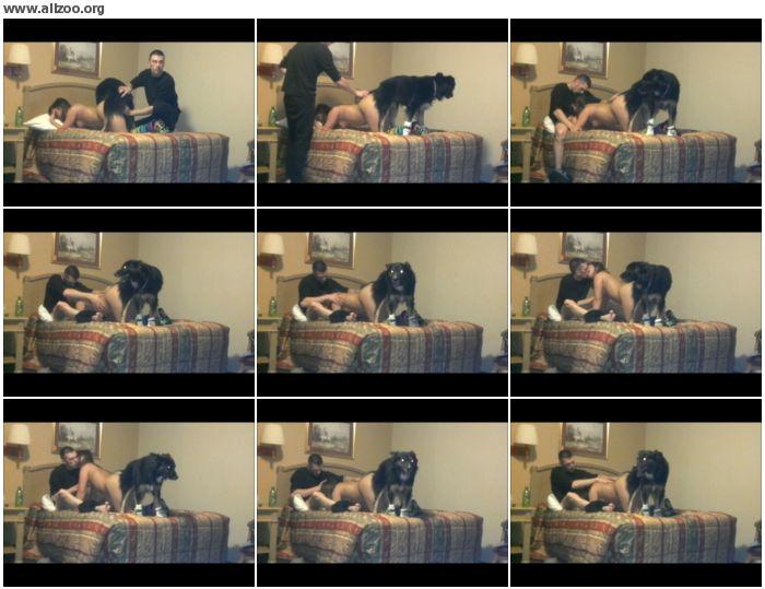 c05fd3886128024 - Kinkcafe, Killerkink, Oh Knotty - Animal Porn 007 - Dog Animal Sex