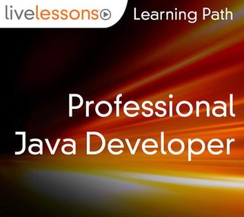 Learning Path - Professional Java Developer
