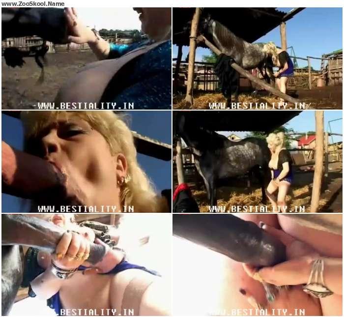 9e7eac1235118134 - Elderly Slut Gets Frisky With Stallion / Horse Porn