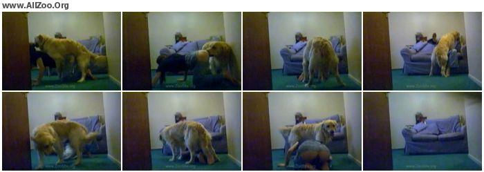 21ab01858764194 - Shylarks Loves Her Dog - Models of Zoo Porn