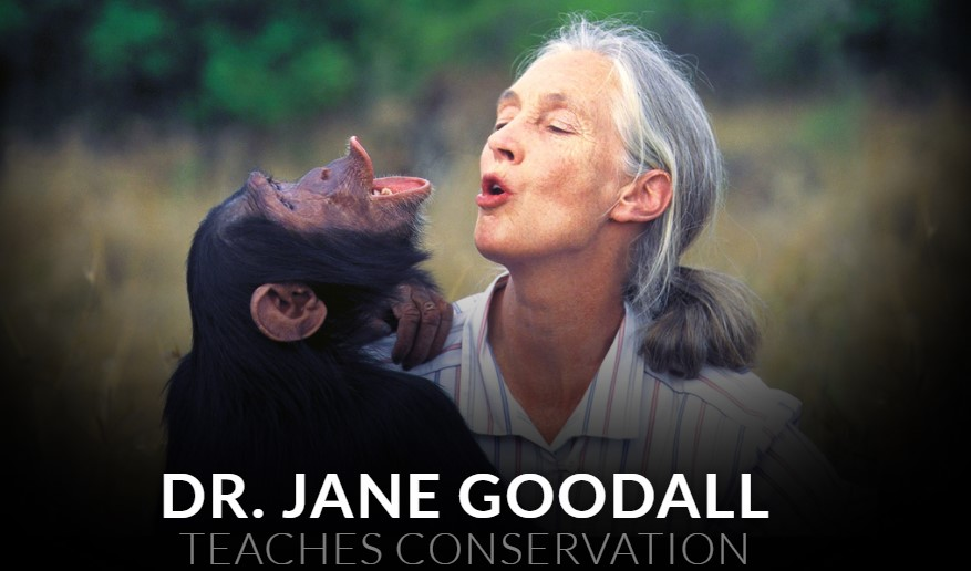 Masterclass Dr Jane Goodall Teaches Conservation 2018