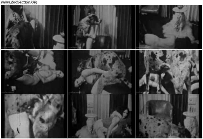 4b56ec1012376484 - Fido Goes Down / AnimalSex Video