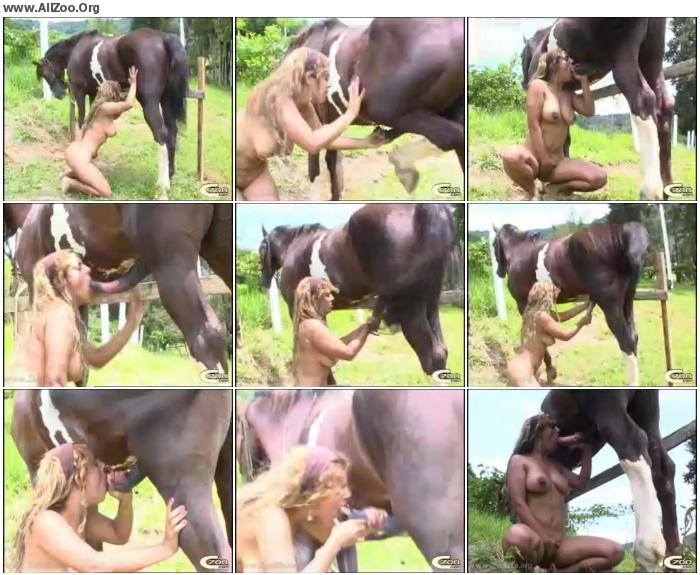 27583d673218593 - Patricia Horse 3 Part 2 - Small Mobile Bestiality Video