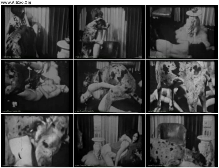 ed2d3b673230993 - Vintage Zoo - Fido Goes Down - Retro AnimalSex